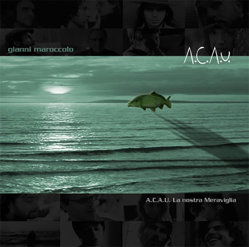cover acau_ok